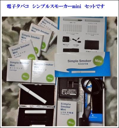 シンプルスモーカーmini セット.JPG
